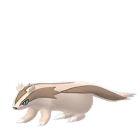 Linoone - Normal - Pokémon GO