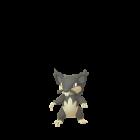 Rattata - Alola Form - Pokémon GO