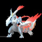 Kyurem - White - Pokémon GO