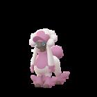 Couafarel - Matron - Pokémon GO