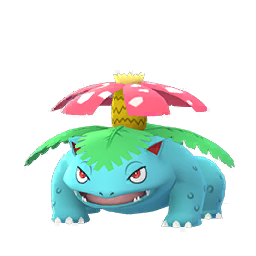 Venusaur - Male