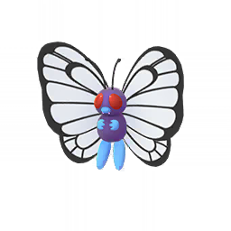 Butterfree - Male