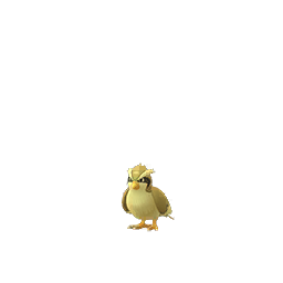 Pidgey - Shiny Male / Female