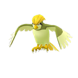 Pidgeotto - Shiny Male / Female