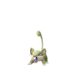 Rattata - Shiny Female