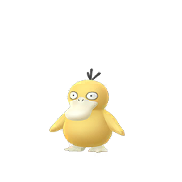 Psyduck - Male / Female