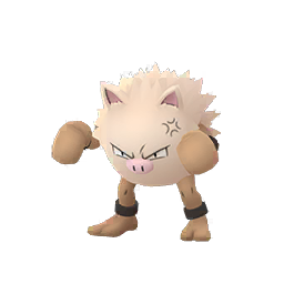 Primeape - Male / Female