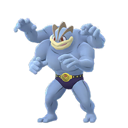 Machamp - Male / Female