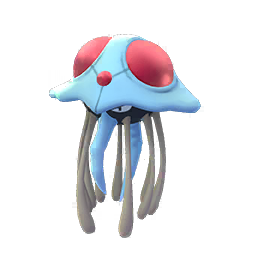 Tentacruel - Male / Female