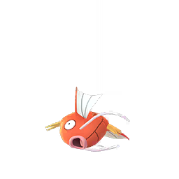 Magikarp - Female