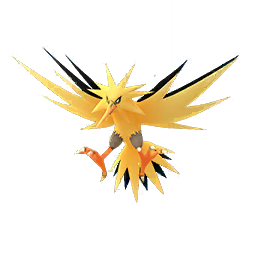 Zapdos - Male / Female