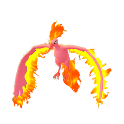 Moltres - Shiny Male / Female
