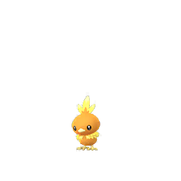 Torchic - Female
