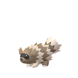 Zigzagoon - Male / Female