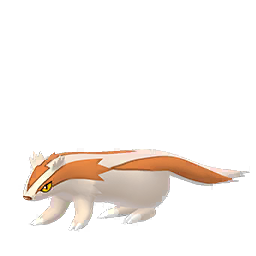 Linoone - Shiny Male / Female
