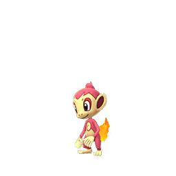 Chimchar - Shiny Male / Female