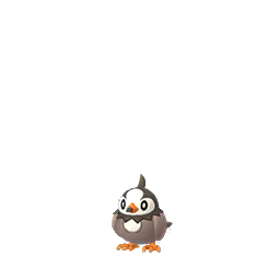 Starly Pokemon GO