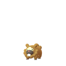 Bidoof - Female