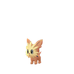 Lillipup - Male / Female