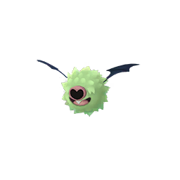 Woobat - Shiny Male / Female