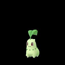 Chikorita Pokemon GO