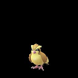 Pidgey Pokemon GO