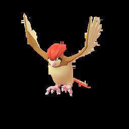 Pidgeotto Pokemon GO