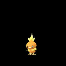 อาชาโม Pokemon GO