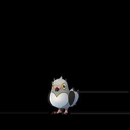 Pidove Pokemon GO
