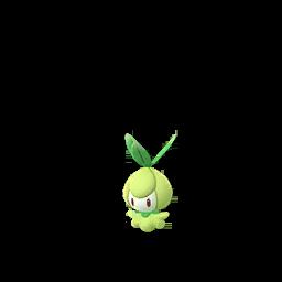 Petilil Pokemon GO